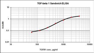 Picture of TGF-β1 Matched Antibody Pair