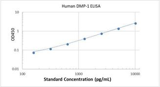 Picture of Human DMP-1 ELISA Kit