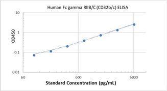 Picture of Human Fc gamma RIIB/C (CD32b/c) ELISA Kit