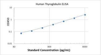 Picture of Human Thyroglobulin ELISA Kit