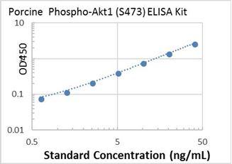 Picture of Porcine Phospho-Akt1 (S473) ELISA Kit