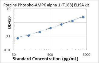 Picture of Porcine Phospho-AMPK alpha 1 (T183) ELISA Kit