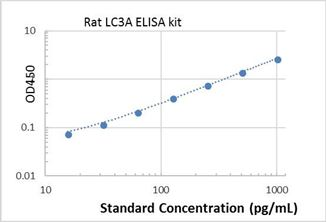Picture of Rat LC3A ELISA Kit