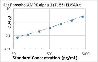 Picture of Rat Phospho-AMPK alpha 1 (T183) ELISA Kit