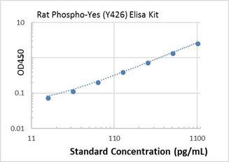 Picture of Rat Phospho-Yes (Y426) ELISA Kit