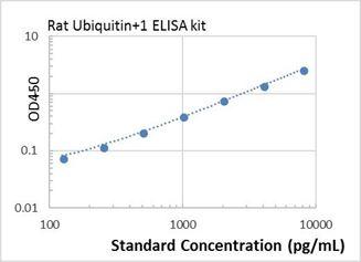 Picture of Rat Ubiquitin+1 ELISA Kit