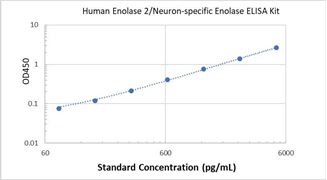 Picture of Human Enolase 2/Neuron-specific Enolase ELISA Kit