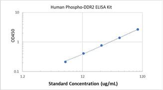 Picture of Human Phospho-DDR2 ELISA Kit