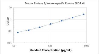 Picture of Mouse Enolase 2/Neuron-specific Enolase ELISA Kit