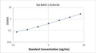 Picture of Rat BACE-1 ELISA Kit