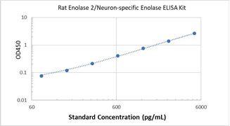 Picture of Rat Enolase 2/Neuron-specific Enolase ELISA Kit