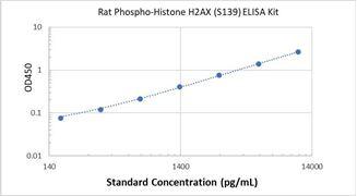 Picture of Rat Phospho-Histone H2AX (S139) ELISA Kit
