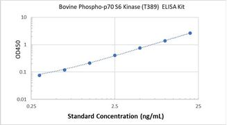 Picture of Bovine Phospho-p70 S6 Kinase (T389) ELISA Kit