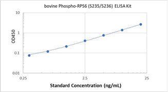 Picture of Bovine Phospho-RPS6 (S235/S236) ELISA Kit