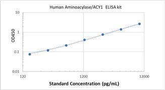 Picture of Human Aminoacylase/ACY1 ELISA Kit