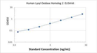 Picture of Human Lysyl Oxidase Homolog 2 ELISA Kit