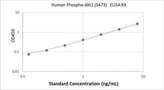 Picture of Human Phospho-Akt1 (S473) ELISA Kit