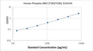 Picture of Human Phospho-JNK2 (T183/Y185) ELISA Kit