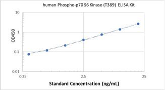 Picture of Human Phospho-p70 S6 Kinase (T389) ELISA Kit