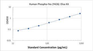 Picture of Human Phospho-Yes (Y426) ELISA Kit